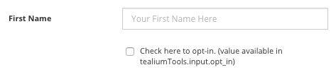 tealium-tools-custom-tool-input-form-fields.jpg