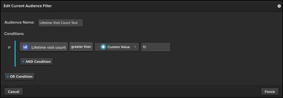 Edit Audience Filter.jpg