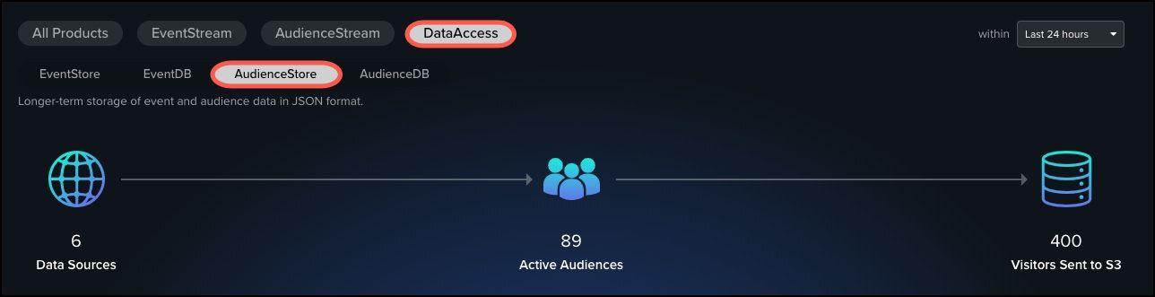 DataSupplyChain_AudienceStore_Details.jpg