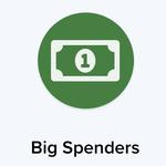getting-started-audiencestream-badge-big-spender.png