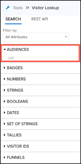 WhiteUI_AudienceStream_VisitorLookupTool_Filter Audience By All Attributes.png