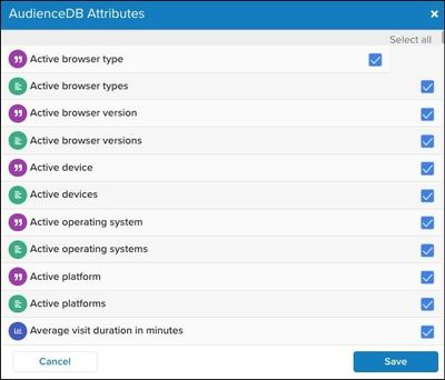 WhiteUI_DataAccess_Working with AudienceDB and EventDB_Adjusting AudienceDB Attributes.jpg