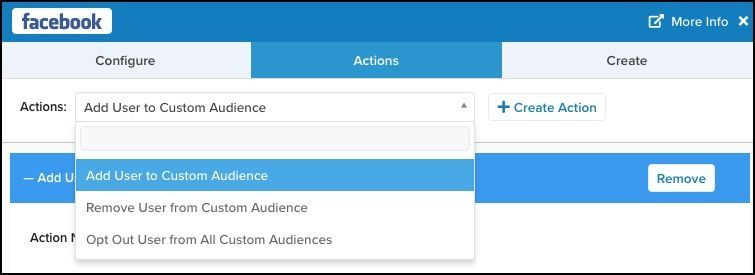 Facebook Ads Connector_Action_Add User to Custom Audience.jpg